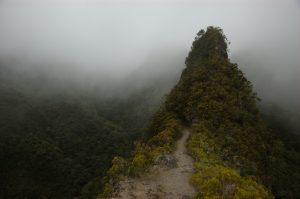Cirque de Mafate :: Sentier Scout :: by Deux Fesses :: a surprisingly sharp ridge