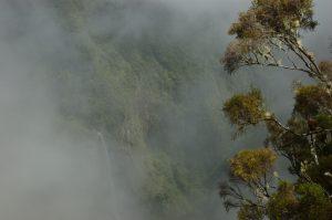 Forêt de Bélouve :: Trou de Fer :: the clouds clear