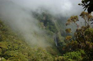Forêt de Bélouve :: Trou de Fer :: a waterfall appears