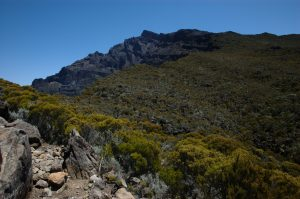 Cirque de Cilaos :: the caldera edge :: looking back to Piton des Neiges
