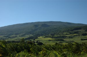 Sud Sauvage :: by St. Philippe :: looking up le Volcan