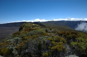 slideshow image le Volcan :: Piton de Partage :: overgrown Rempart de Bellecombe ridge and Gîte du Volcan above Rivière de l'Est