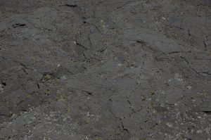 slideshow image le Volcan :: the lava fields in Enclos