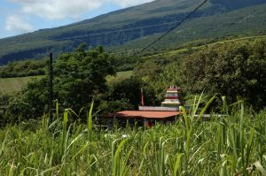 East Coast :: by St. Anne :: and Indian temple somewhwere in the sugar cane fields