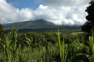 East Coast :: by St. Anne :: le Volcan slopes
