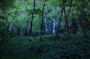 East Coast :: Pointe des Cascades :: the cascades