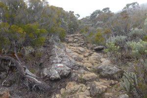 Forêt de Bébour :: the rocky trail above Cap Anglais