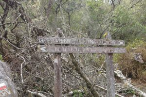 Cirque de Cilaos :: the over-optimistic timings of old trail signs
