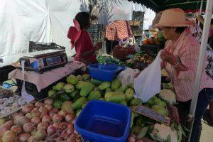 Saint Pierre :: the Saturday market :: chouchou