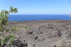 Sud Sauvage :: Grand Brûlé :: the lava of the 2007 event